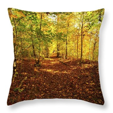 Autumn Leaves Pathway  Throw Pillow