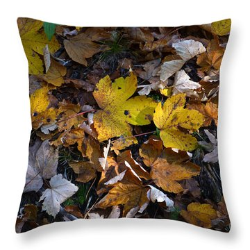Throw Pillow featuring the photograph Autumn Leaves by Phil Banks