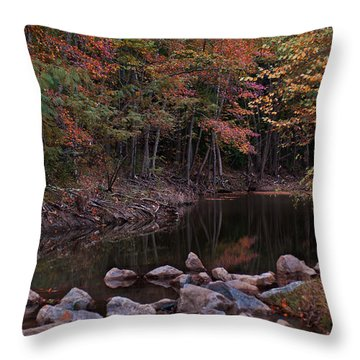 Autumn Leaves Reflecting In The Stream Throw Pillow
