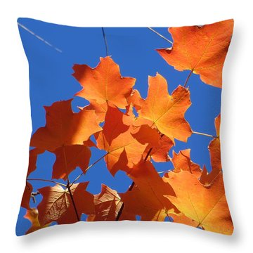 Autumn Leaves Throw Pillow by Rita Mueller