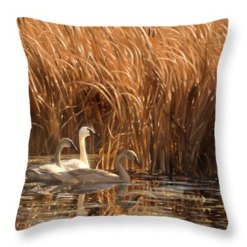Autumn Light- Trumpeter Swans Throw Pillow by Aaron Blaise