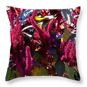 Autumn Magenta Jewel Alstede Farm Throw Pillow