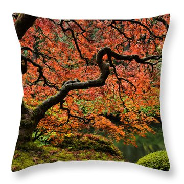 Autumn Magnificence Throw Pillow by Don Schwartz
