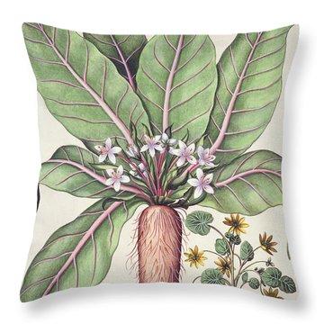 Autumn Mandrake Throw Pillow