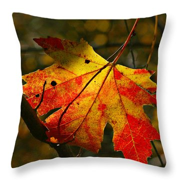 Autumn Maple Leaf Throw Pillow by Richard Engelbrecht