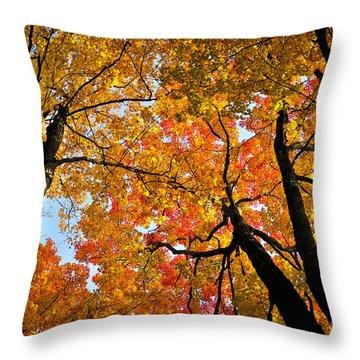 Autumn Maple Trees Throw Pillow by Elena Elisseeva