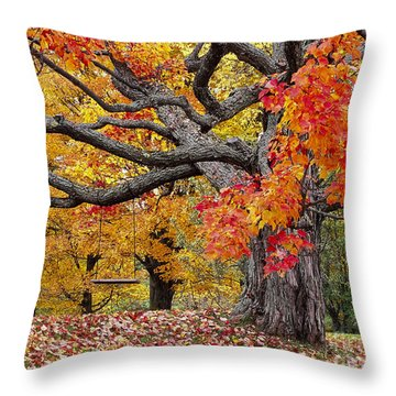 Throw Pillow featuring the photograph Autumn Memories by Alan L Graham