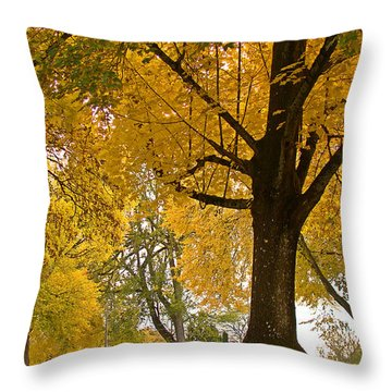 Autumn Memories Throw Pillow by Beverly Guilliams