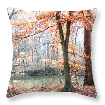 Throw Pillow featuring the photograph Autumn Mist by Lorna Rogers Photography