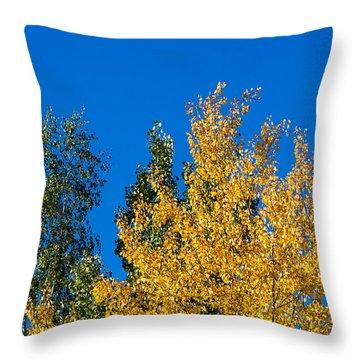 Autumn Mix 2 - Featured 3 Throw Pillow by Alexander Senin