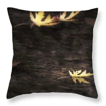 Autumn Mood - Fall - Leaves Throw Pillow