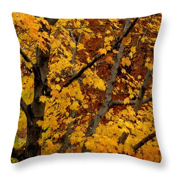Autumn Moods 21 Throw Pillow by Rodney Lee Williams