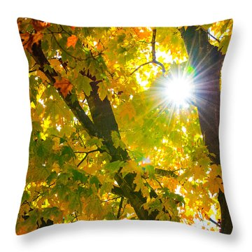 Autumn Morn Throw Pillow