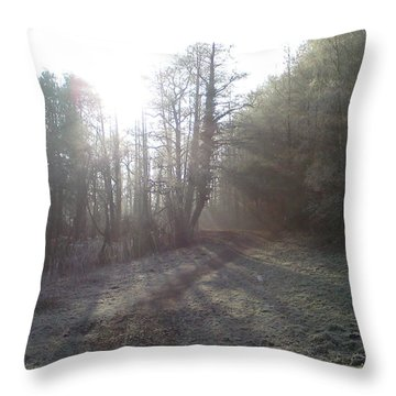 Autumn Morning 3 Throw Pillow by David Stribbling