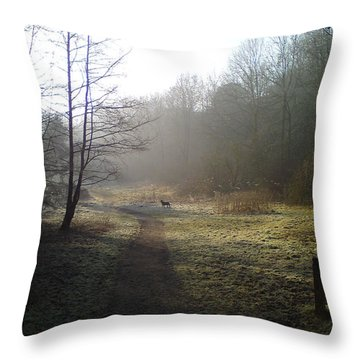 Autumn Morning 4 Throw Pillow by David Stribbling