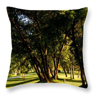 Autumn Morning Stroll Throw Pillow