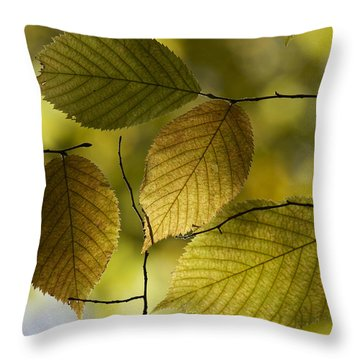 Autumn Mosaic Throw Pillow by Penny Meyers