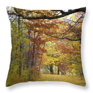 Autumn Nature Trail Throw Pillow