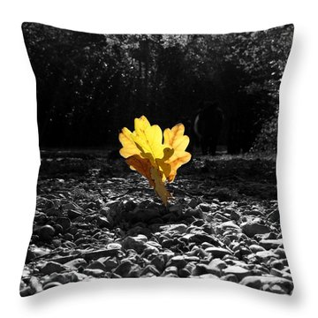 Autumn Oak Isolations Throw Pillow by Terri Waters
