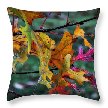 Throw Pillow featuring the photograph Autumn Oak Leaves Macro 001 by Lance Vaughn
