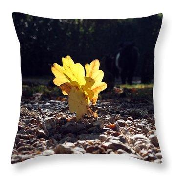 Autumn Oak Throw Pillow by Terri Waters