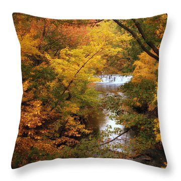Throw Pillow featuring the photograph Autumn On Display by Jessica Jenney
