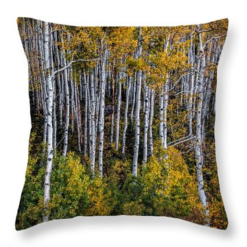 Throw Pillow featuring the photograph Autumn On Mcclure Pass by Ken Smith