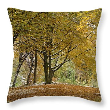 Throw Pillow featuring the photograph autumn on Moenchsberg in Salzburg by Rudi Prott