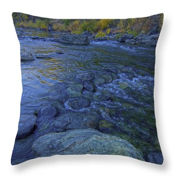 Throw Pillow featuring the photograph Autumn On The American River 2 by Sherri Meyer