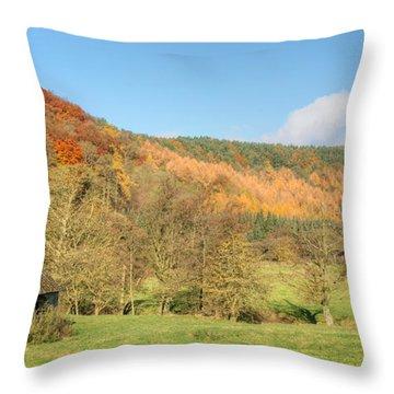 Autumn On The Hillside Throw Pillow by David Birchall
