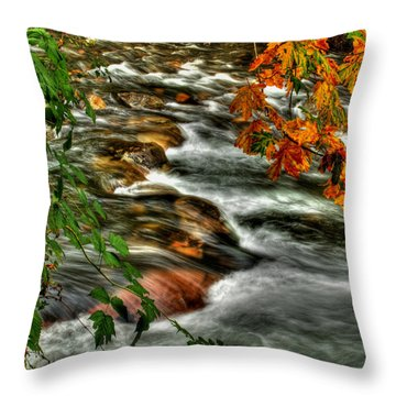 Autumn On The River Throw Pillow by Randy Hall