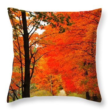 Throw Pillow featuring the photograph Autumn Orange 2 by Terri Gostola
