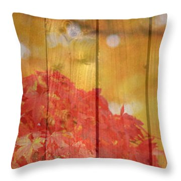 Autumn Outdoors 1 Of 2 Throw Pillow