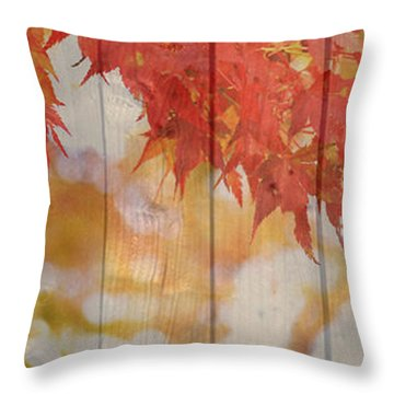 Autumn Outdoors 2 Of 2 Throw Pillow