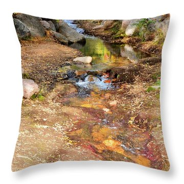 Throw Pillow featuring the photograph Autumn Paradise 1 by Diane Alexander