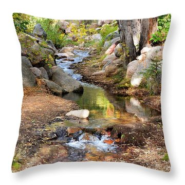 Throw Pillow featuring the photograph Autumn Paradise 2 by Diane Alexander
