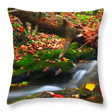 Autumn Paths Throw Pillow