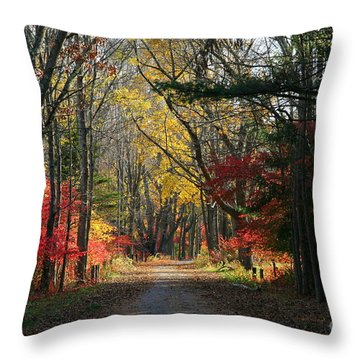 Autumn Paths    No.2 Throw Pillow by Neal Eslinger