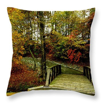 Throw Pillow featuring the photograph Autumn Peace by James C Thomas