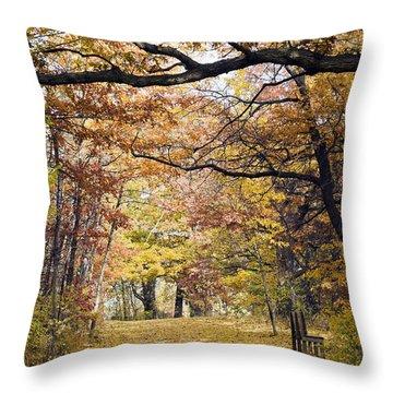 Autumn Pedestrian Path Throw Pillow