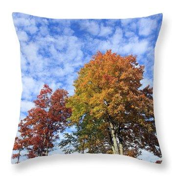 Autumn Perfection Throw Pillow