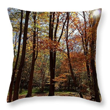 Autumn Picnic Throw Pillow by Debbie Oppermann