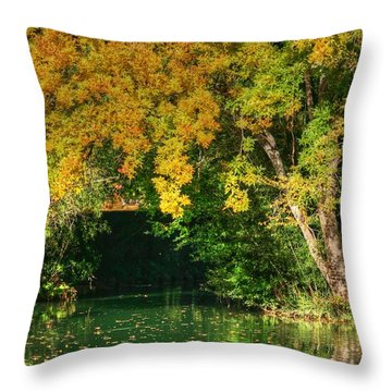 Autumn Pond Throw Pillow by Ester  Rogers