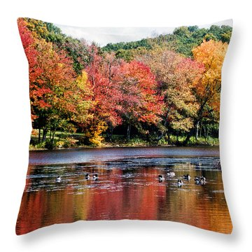 Throw Pillow featuring the photograph Autumn Pond by William Selander