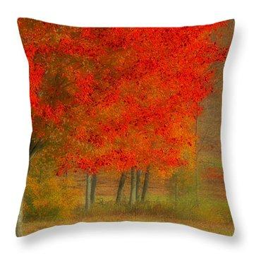 Autumn Popping Throw Pillow by Karol Livote