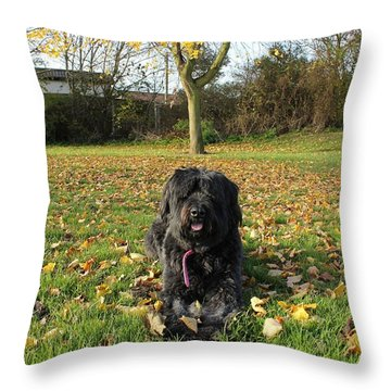 Throw Pillow featuring the photograph Autumn Portrait by Vicki Spindler