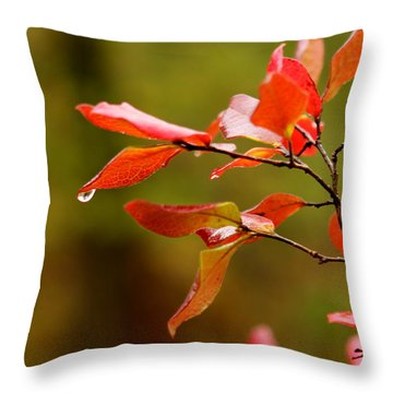 Autumn Raindrop Throw Pillow