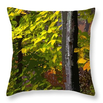 Throw Pillow featuring the photograph Autumn  by Randy Pollard