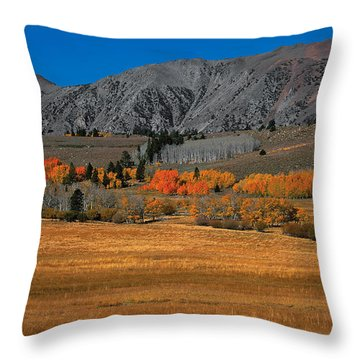 Autumn Range Pano Throw Pillow