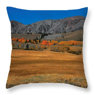 Autumn Range Throw Pillow